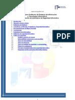 Auditoria Seguridad Informatica