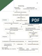 4.2 Pathophysiology Breast CA