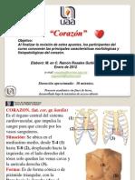 corazonprimera-120614080512-phpapp01