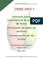 ENSAYO NRO 1 - Investigación sobre consistencia en pulpas de frutas