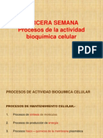 Pbhi Semana 3 Bioquimica Celular2012ii