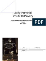 Early Hominid Visual Discovery