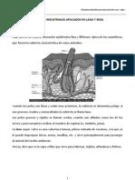 Manual de Industrializacion de La Lana