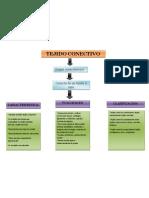 Mapa Conceptual Tejido Conectivo PDF