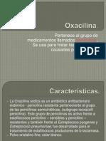 Oxacilina