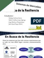En Busca de La Resiliencia