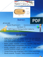 mikrobiologi BAKTERI (amel)