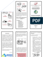 presupuesto participativo (triptico)