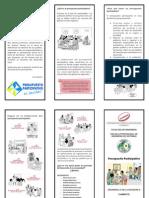 presupuesto participativo (triptico_2)