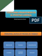 CUESTIONES PROBATORIAS_LABORAL