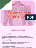 resumen de biomecanica del hombro