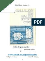 Edita El gato descalzo 15. Callejón sin salida. Armando Arteaga
