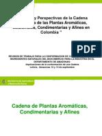 Cadena_Plantas Aromáticas_MinAgricultura_