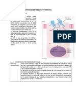 Fibrosis Quistica Resumen