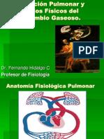 Circulación Pulmonar y Principios Físicos del Intercambio Gaseoso