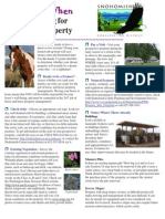 12 Tips When Shopping for Horse Property