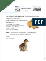 Enfermedades de Animales Domesticos
