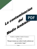 La Contaminacion Del Medio Ambiente y Prevencion