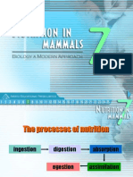 Nutrition in Mammal Arist Edit