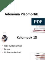 Pleomorfik Adenoma (2)