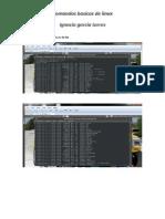 Ejercicio Basico de Linux