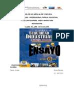 Ensayo Seguridad Industrial. Denis