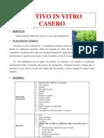 Cultivo in Vitro Casero