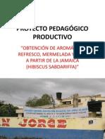 PROYECTO PEDAGÓGICO PRODUCTIVO