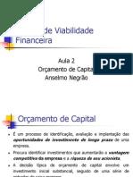 Análise de Viabilidade Financeira - Aula 2 - Orçamento de Capital