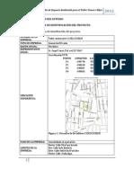 """Resumen Ejecutivo del Estudio de Impacto Ambiental para el Taller """"Yanza e Hijos"""""""