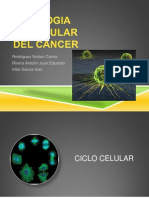 Biologia Molecular Del Cancer