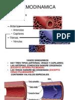 Anatomia Cardio Vascular