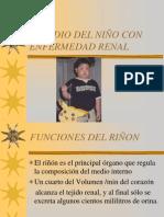 Presentación del Estudio del niño con enfermedad renal ii