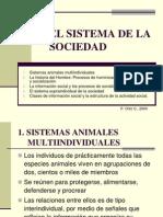 7. Pbg-el Sistema de La Sociedad