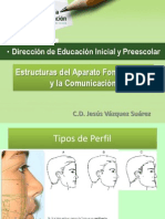 Estructuras del Aparato Fonoarticular y la Comunicación