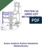 AAprotein MET II 2 3