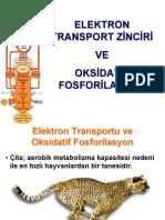 Etc Oxphos 2 13