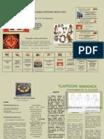 imprimircartanahui