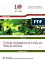 Agroecologico Janeiro 2012