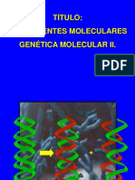 traducción de las proteinas