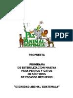 Prop_Munis (con FOTOS)  DIGNIDAD ANIMAL GUATEMALA Programa Esterilización Masiva Perros y Gatos