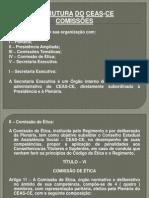Conheça a estrutura das Comissões do CEAS-CE