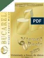 Libro de Oro de Visual Basic