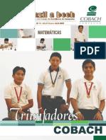 revista 16 usazil a beh.pdf