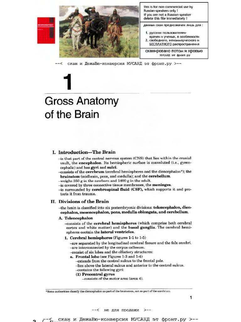 Neuroscience Brs
