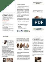 folder de combate do caramujo africano SEMAM aripaunã segunda versão
