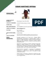 Hoja de Vida Julio Martínez