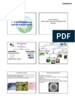 Caracteristícas Gerais da Célula