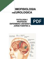 ANTOMOFISIOLOGIA NEUROLOGICA 1