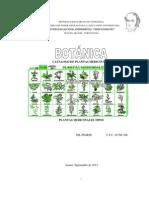 Catalogo de Plantas Medicinales-ok